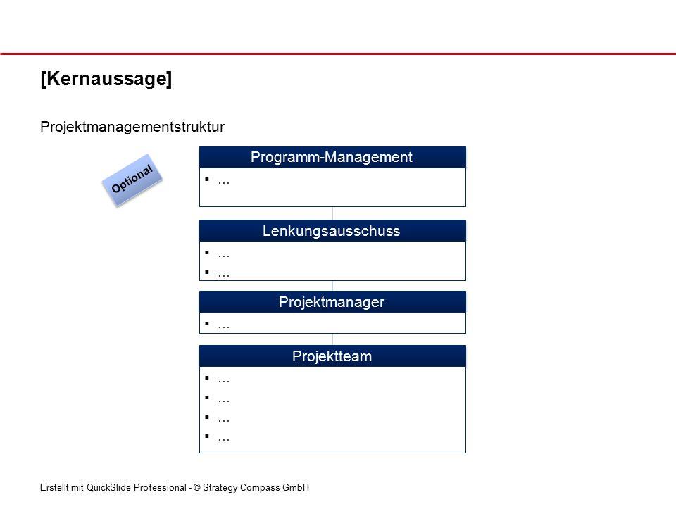 [Kernaussage] Projektmanagementstruktur Programm-Management